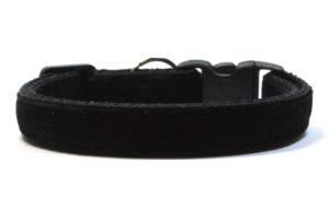 Black Velvet Breakaway Cat Collar by Swanky Kitty