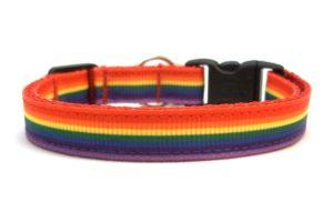 Rainbow Breakaway Cat Collar by Swanky Kitty