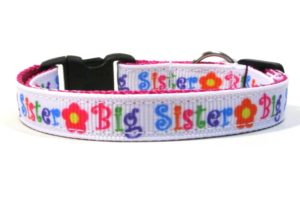 Big Sister Breakaway Cat Collar by Swanky Kitty