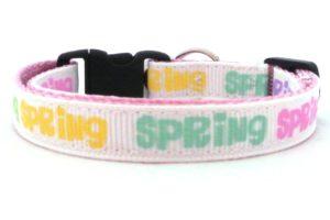 Spring Collars