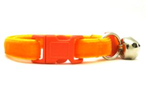 Orange Velvet Breakaway Cat Collar by Swanky Kitty – clip