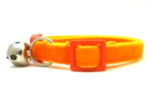 Orange Velvet Breakaway Cat Collar by Swanky Kitty – side